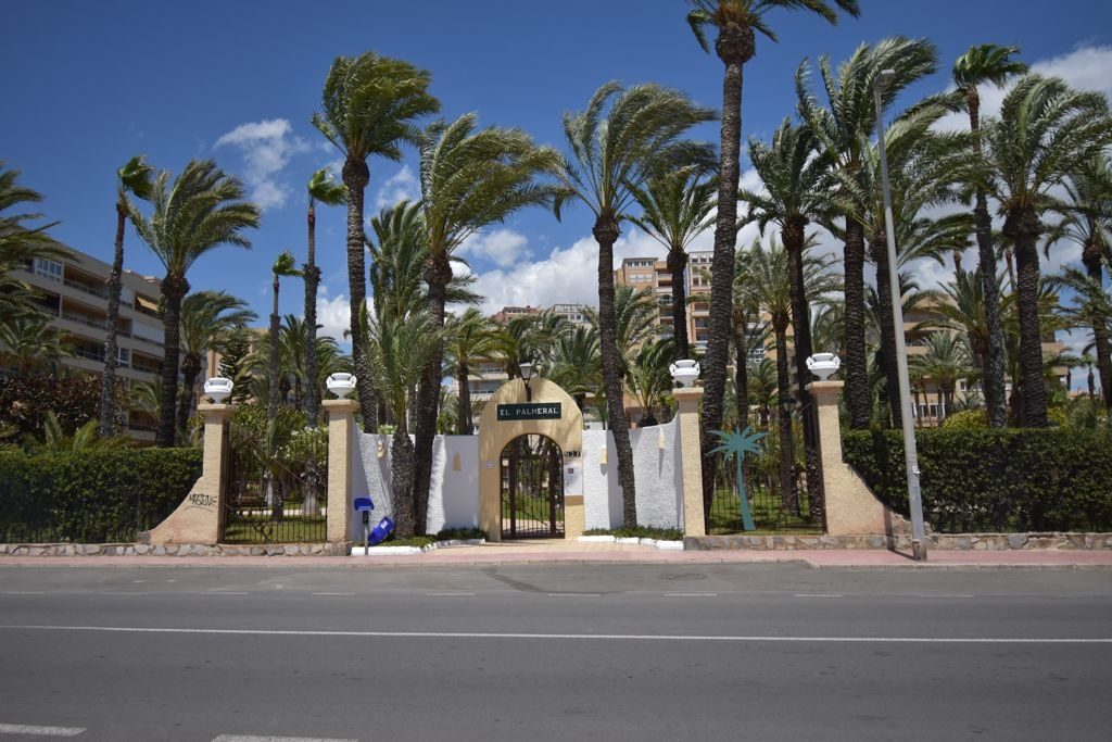 Apartment for sale in RESIDENCIAL EL PALMERAL, Torrevieja